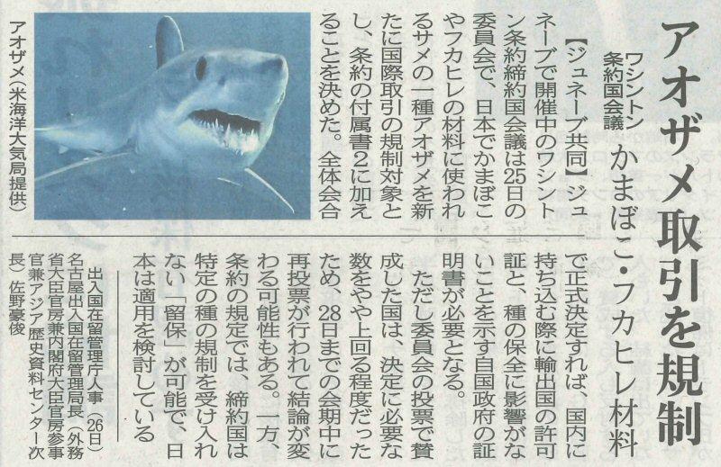 アオザメの話題