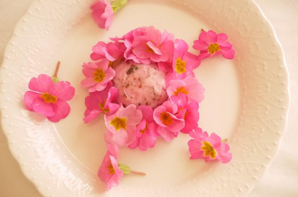 花を愛でる「春の野遊」