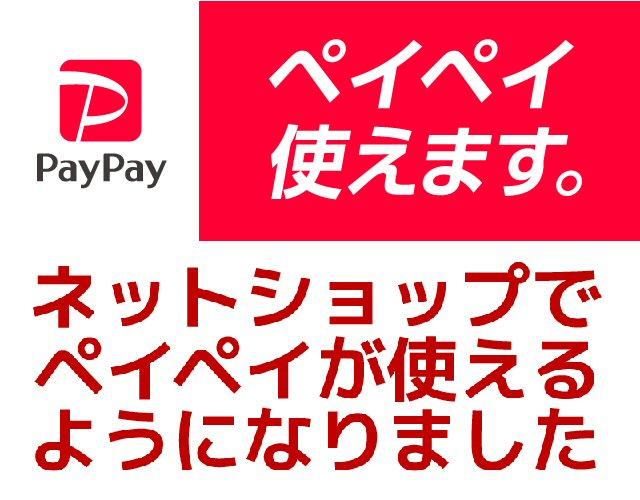 河内屋オンラインショップでもPayPay決済が可能となりました!