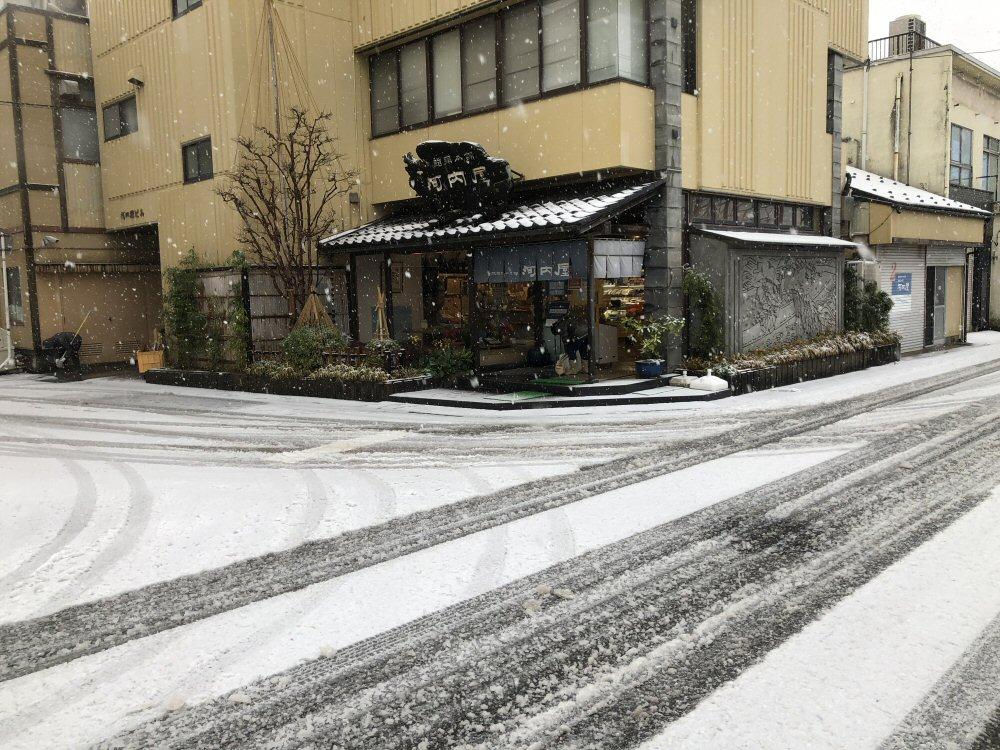 寒波到来!初雪!天気予報通り!