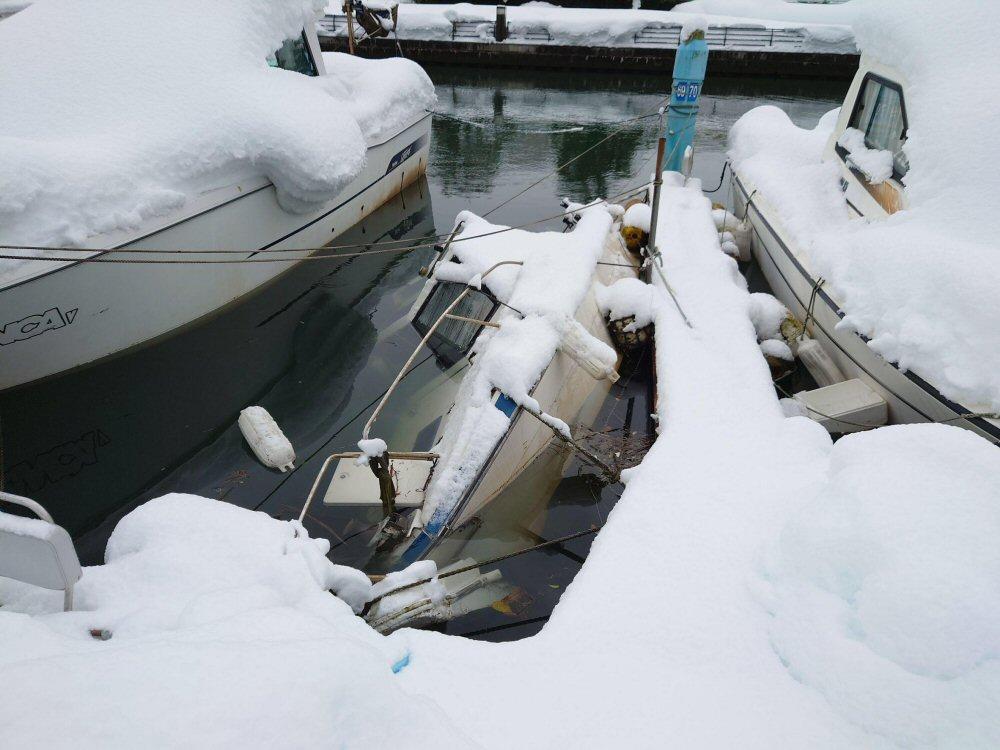今回の大雪は海でも大きな被害が出ました!